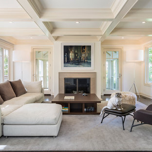 Living Room Design Ideas & Remodeling Pictures   Houzz