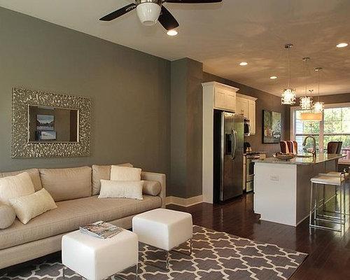 Brownstone Interior Design Ideas Remodel Pictures Houzz