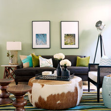 Transitional Living Room by Kyle Schuneman | Live Well Designs