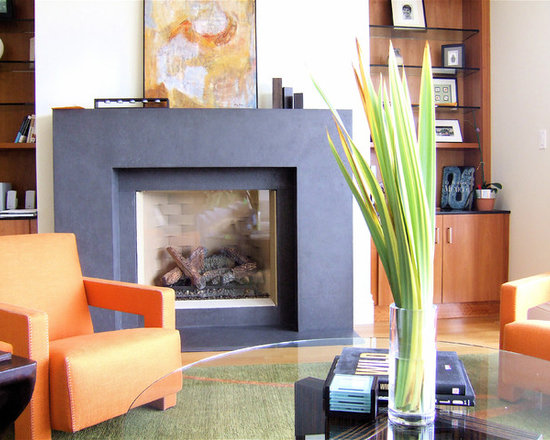 Contemporary Fireplace Surround Houzz