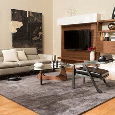 Modern Living Room by iRobot