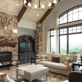 Living room - traditional medium tone wood floor and brown floor living room idea in Cincinnati with gray walls, a standard fireplace, a stone fireplace and a tv stand