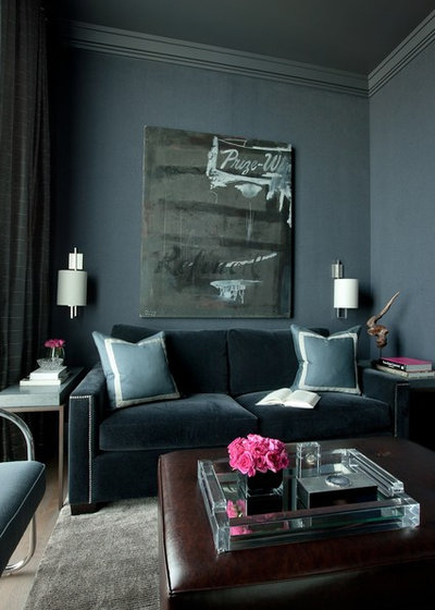 Transitional Living Room by jamesthomas Interiors