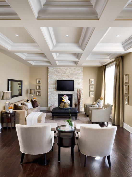 Traditional Living Room Design Ideas houzz livingrooms - home design ideas and pictures