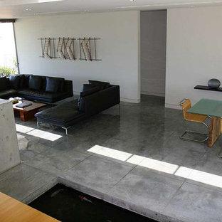 サンフランシスコの大きいアジアンスタイルのおしゃれな独立型リビング (ライブラリー、白い壁、コンクリートの床、標準型暖炉、コンクリートの暖炉まわり) の写真