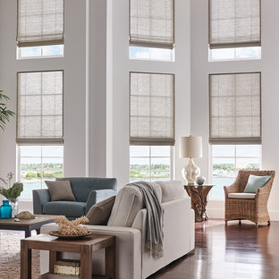 Window Treatment Ideas Houzz