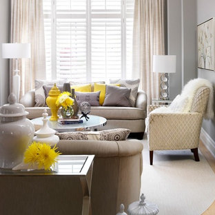 Gray Walls With Blue Furniture Living Room Ideas Photos Houzz