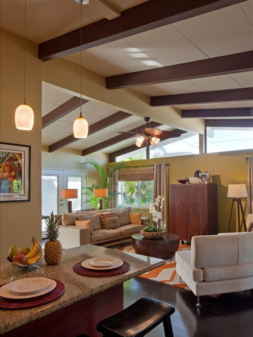 Houzz Modern Tropical Design Ideas Remodel Pictures