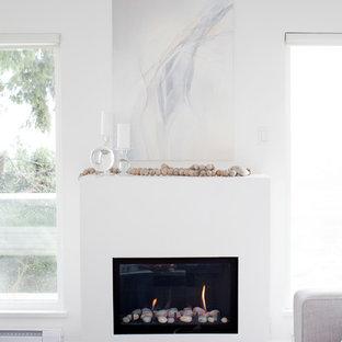 Minimalist Fireplace Houzz