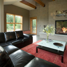 Modern Living Room by Therese DuBravac