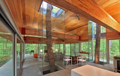 10 Tree-Hugging Interiors That Work Around Nature