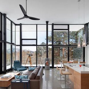 Imagen de salón abierto, actual, con paredes blancas, chimeneas suspendidas y suelo gris