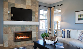 Best 15 Fireplace Manufacturers And Showrooms In Woodbury, MN | Houzz