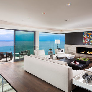 Inspiration For A Contemporary Living Room Remodel In Orange County