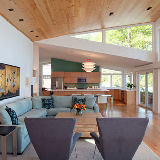 Living room - contemporary formal and open concept light wood floor living room idea in Minneapolis with white walls