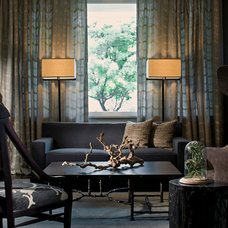 Transitional Living Room LAKEVIEW RESIDENCE
