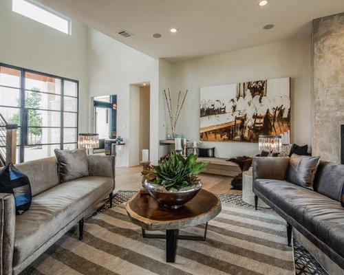 Contemporary Serene Living Room Design Ideas Remodels