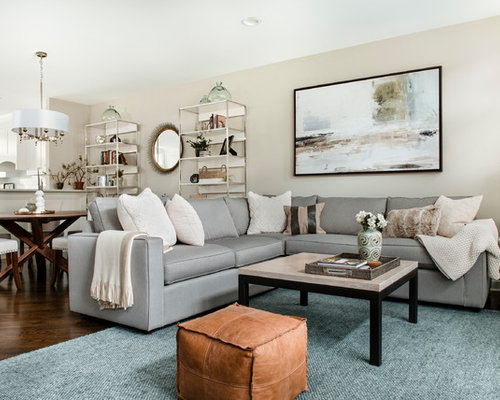 Transitional Design Living Room Best 100 Transitional Living Room Ideas & Remodeling Photos  Houzz