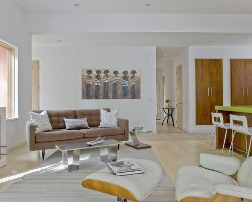 Living Room Closet Home Design Ideas, Renovations & Photos