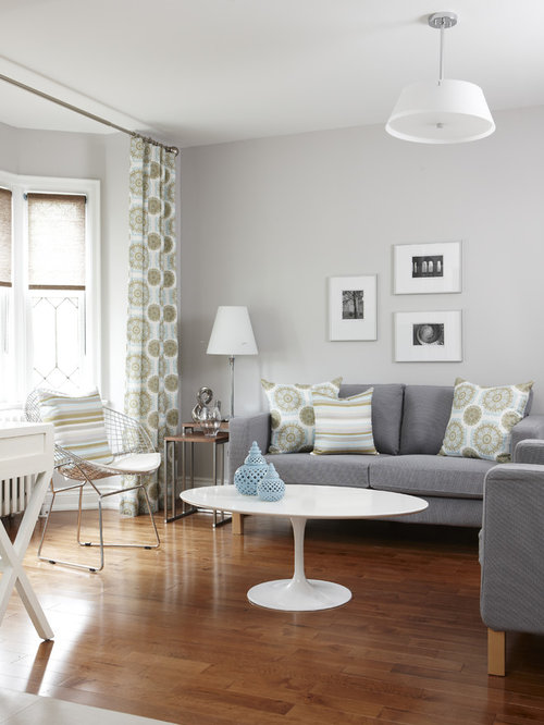 Light grey living room houzz for Living room decor ideas houzz