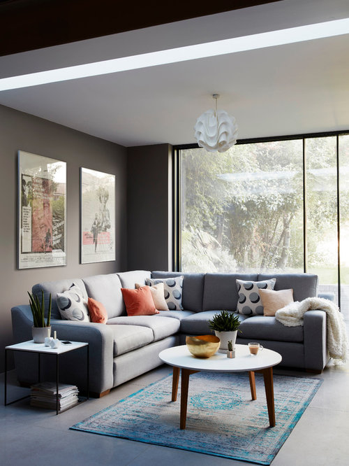Contemporary Living Room Ideas & Photos