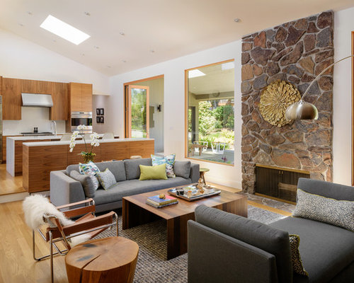 Best Modern Living Room Design Ideas Remodel Pictures Houzz