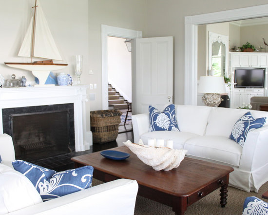 Blue And White Living Room Houzz