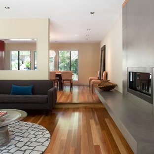 Example of a trendy living room design in San Francisco with a ribbon fireplace