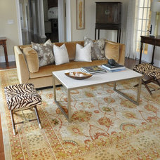 Traditional Living Room by Dover Rug & Home