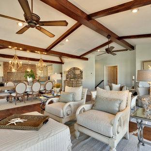 Idee per un ampio soggiorno chic con pareti blu