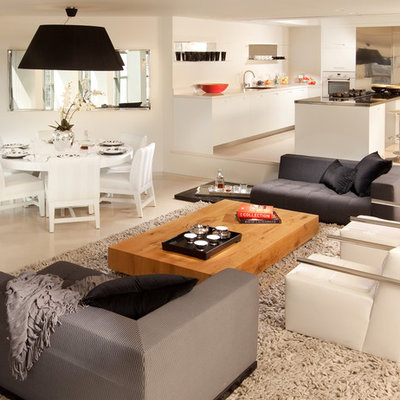 Example of a minimalist open concept living room design in Other