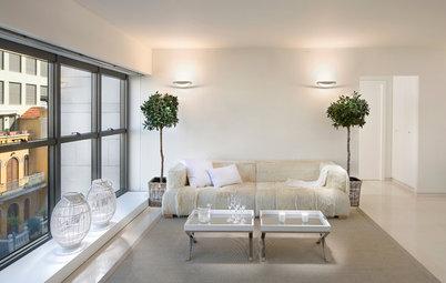 Easy Green: Indoor Trees