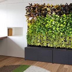 City Plantscaping Llc Denver Co Us 80205