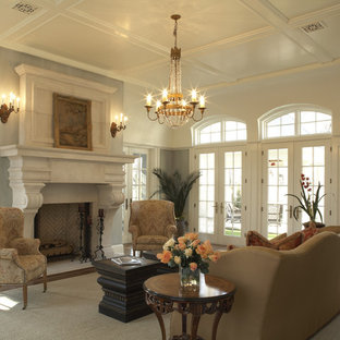 Living room - traditional formal living room idea in Minneapolis with a standard fireplace and no tv