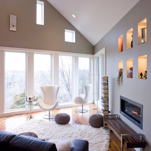 Trendy living room photo in Other with gray walls and a ribbon fireplace