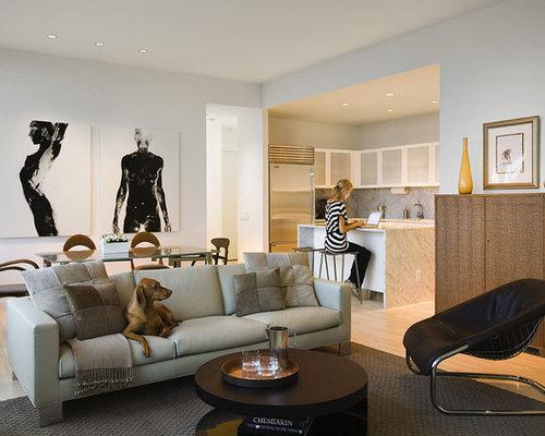0ff119af0d9b7ad0_6535 w500 h400 b0 p0 contemporary living room pet friendly home decor houzz,Cat Friendly Home Design
