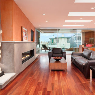 Example of a mid-sized trendy enclosed medium tone wood floor and red floor living room design in Los Angeles with a ribbon fireplace, multicolored walls and a plaster fireplace