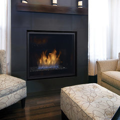 contemporary fireplaces by Regency Fireplace Products
