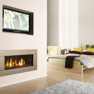 Modern Gas Fireplace Houzz