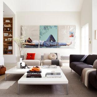 Esempio di un soggiorno minimal con pareti bianche
