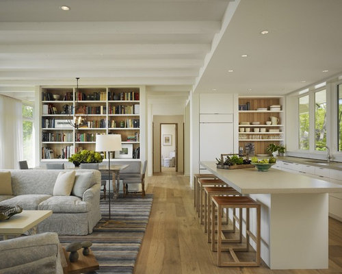 Inspiration For A Mid Sized Transitional Open Concept Living Room Remodel  In Chicago With Light