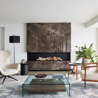 Inspiration for a mid-sized contemporary medium tone wood floor and brown floor living room remodel in Boston with a ribbon fireplace, a stone fireplace and white walls