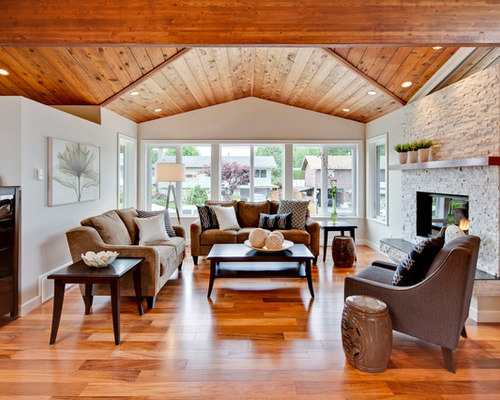 Living Room Vaulted Ceiling Houzz  U003e Source. Saveemail Part 78