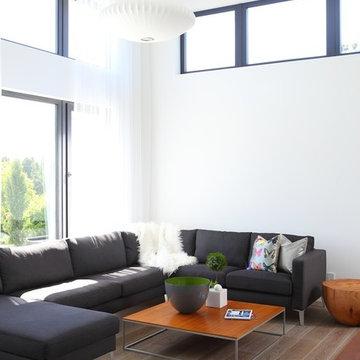 Living Rooms | Window + Door Designs
