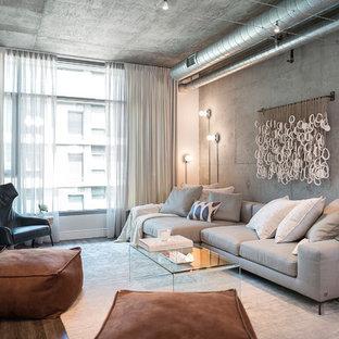 Exemple d'un petit salon industriel avec une salle de réception, un mur gris, aucune cheminée, un sol en vinyl et un téléviseur fixé au mur.