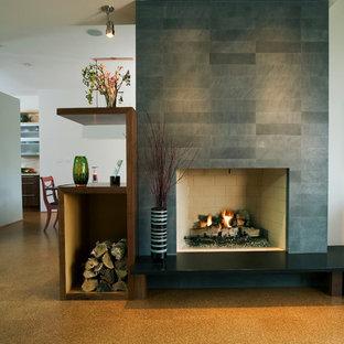 Esempio di un soggiorno design con pavimento in sughero