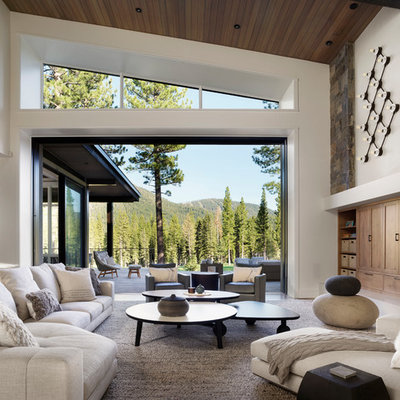 Inspiration for a contemporary medium tone wood floor and brown floor living room remodel in Other with white walls, a standard fireplace and a stone fireplace