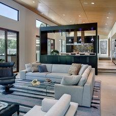 Contemporary Living Room by Linda Fritschy Interior Design