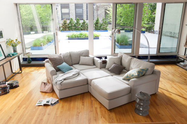 Contemporary Living Room by Lovesac