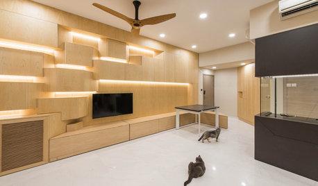Room Tour: A Cat-Centric Living Room